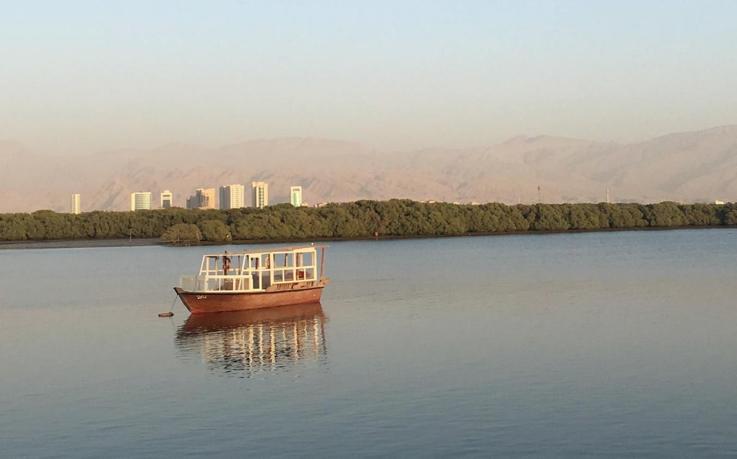 Four Benefits of an International Internship in Ras al Khaimah